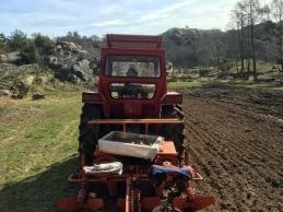 Wiggo i traktorn