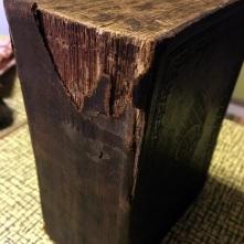 Sida-Slaktforskning-Bibeln-001